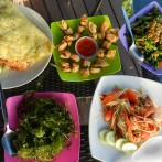 January 29, 2014: Cooking Nok Style on Koh Lanta, Part III: ส้มตำ and แผ่นไทย